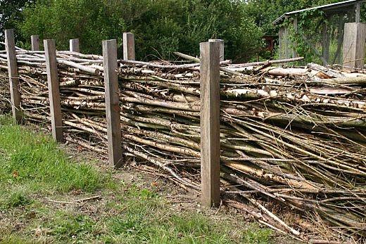 hinten zum Feld hin! Perfekt als Windschutz und zum Entsorgen von Strauch und Baumschnitt! :)