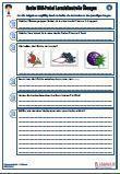 HSU #Hecke Unterrichtsmaterial für den #Sachkundeunterricht.  Verschiedene Fragen zu dem Thema: Hecke •Hagebutte •Sträucher •Heckensträucher •Heckenrose •Lebensraum •Beeren •Heckenbewohner • #Bodenschicht • #Krautschicht •Schutz •Früchte •Pflanzengruppe • #Nahrungskette •27 Fragen •2 x #Lernzielkontrollen •Ausführliche Lösungen •13 Seiten