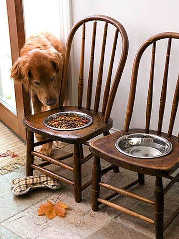 For a big dog, vintage chairs prop up food bowls nicely. | 26 DIYs Your Pet Will Totally Appreciate