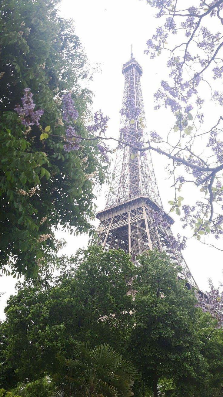 🌸 Printemps à Paris 🌸