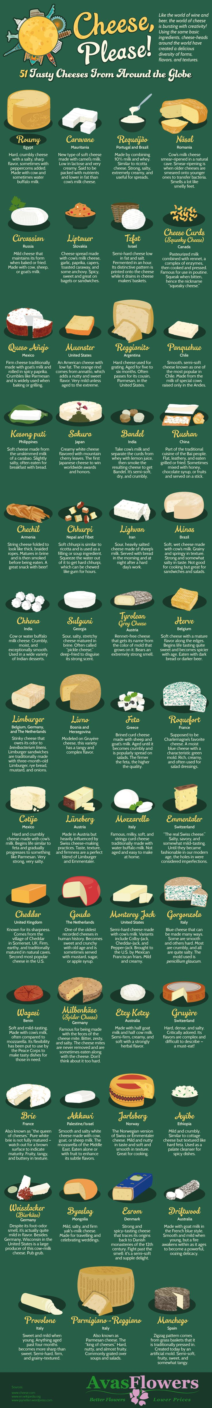 Cheese, Please! 51 Tasty Cheeses From Around the Globe #Infographic #Food #Travel                                                                                                                                                                                 More