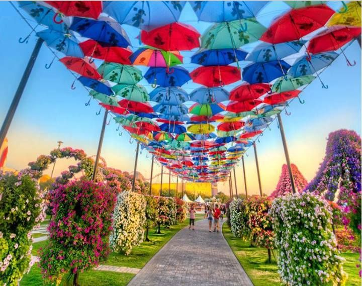 172 Best Beautiful Places Uae Images On Pinterest Dubai Uae Beautiful Places And Places To