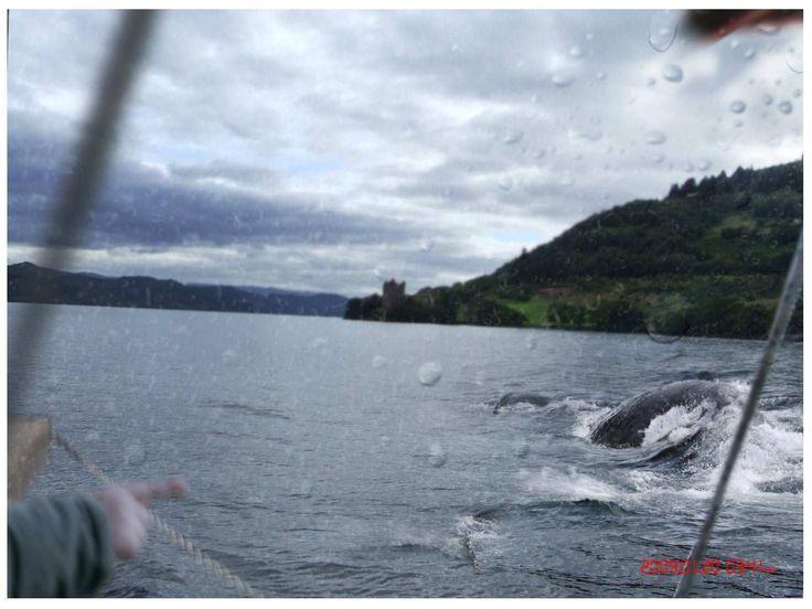 Back of Loch Ness Monster