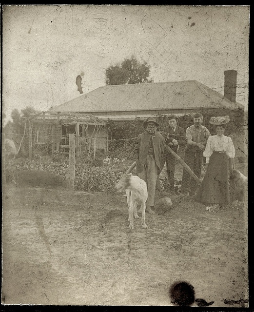 An Australian homestead This is the least damaged of two photos from a stereocard. I'm guessing that it is from around 1910. Please note that this photo has an Aboriginal man in it. Photos of indigenous Australians are quite difficult to come by even in Australia so I'm very lucky to have this one. Two dogs are also keeping the group company.