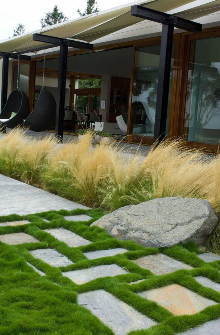 Feather reed grass in a modern yard - Decoist