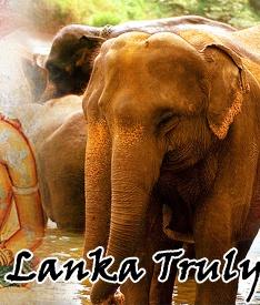 Sri Lanka Tourism | Sri Lanka Packages | Sri Lanka Tours