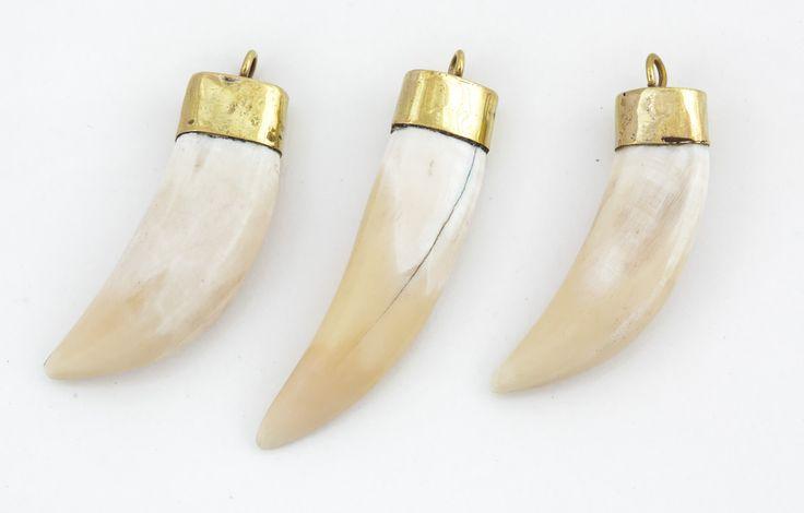 Camel Tooth pendants