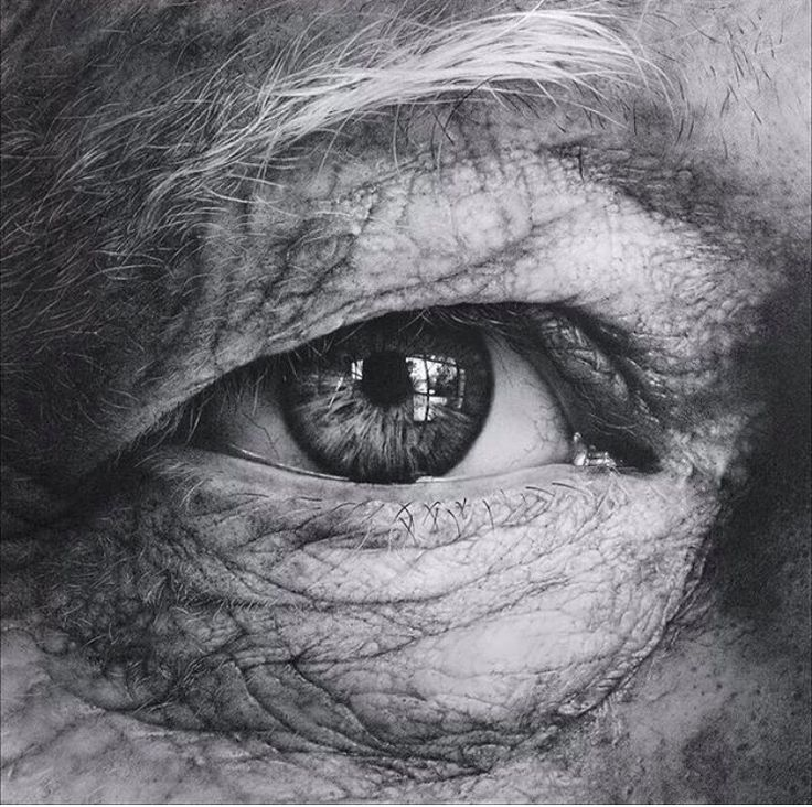 Armin mersmann pencil drawing