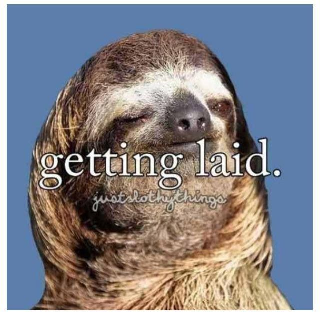 Creepy sloth whisper - photo#46