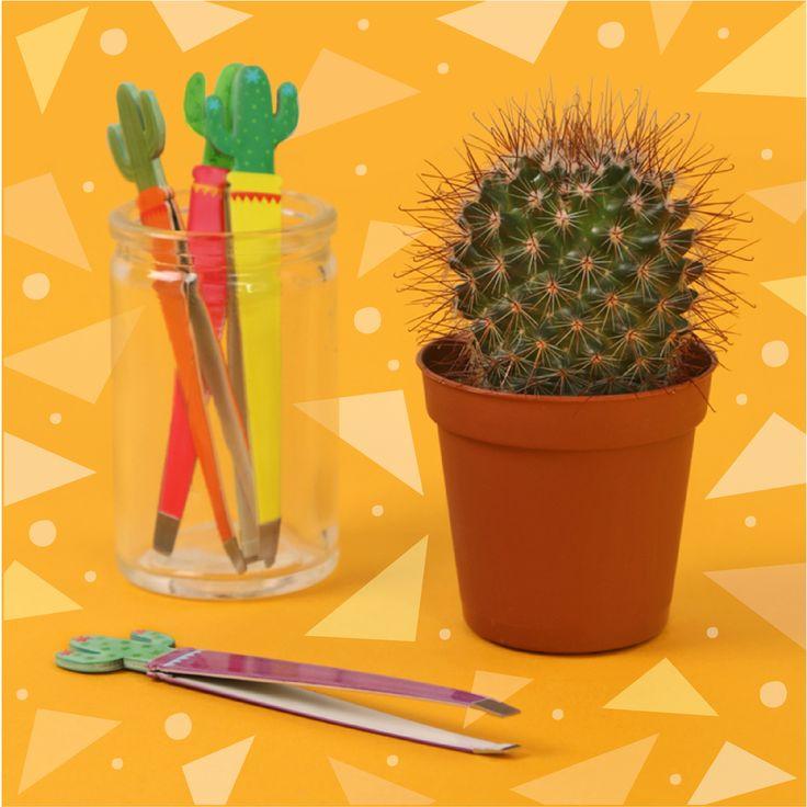 Pryč se všemi nechtěnými chloupky! Pinzeta Kaktus je praktický a trendy doplněk do každé kabelky! #kaktus #cactus #tweezer