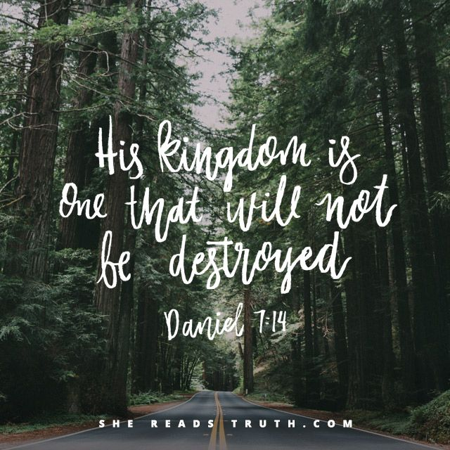 Day 15 of the Daniel reading plan from She Reads Truth | The Son of Man Join us at SheReadsTruth.com or on the SRT app!