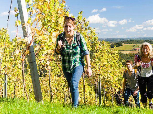Urlaub im Süden Österreichs - alle Hotels, Privatunterkünfte, Ferienwohnungen…