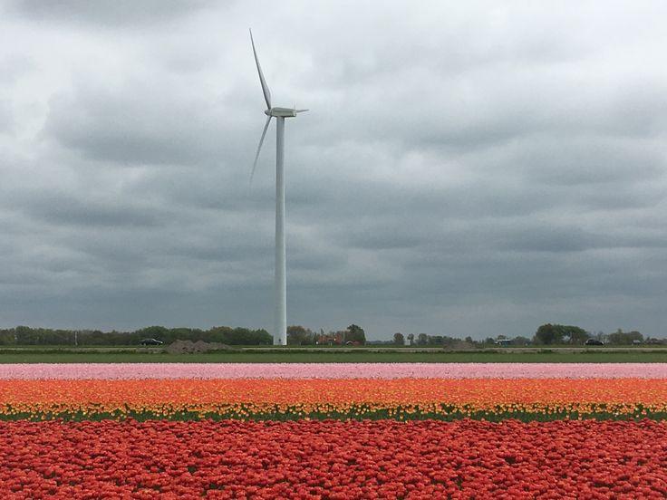 North-Holland.