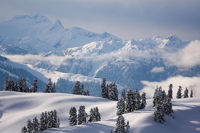 Winter alpine scene, Garibaldi Provincial Park, British Columbia, Canada