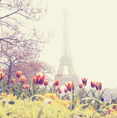 Il n'y a rien de mieux que Paris au printemps