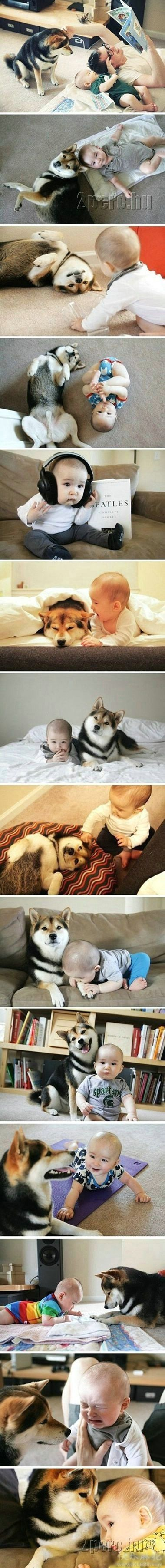 this is exactly why i want raidyn to have a dog so he can have his own little best friend