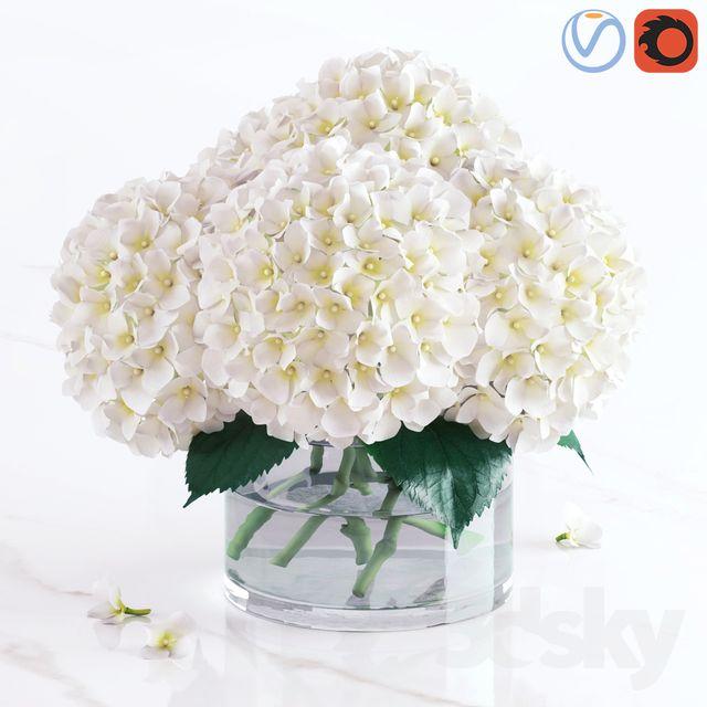 3d Models Bouquet White Hydrangea Bouquet White Hydrangea Bouquet White Hydrangea Hydrangea Bouquet