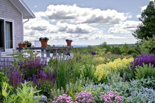 Beachy: Flowers Gardens, Gardens Ideas, Color, Landscape Design, Cunningham Landscape, Perennials Gardens, Traditional Landscape, Native Plants, Matthew Cunningham