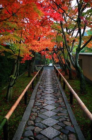 Kouetsuji-temple Kyoto