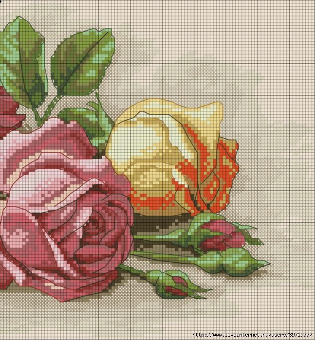 cross stitch roses PART 2