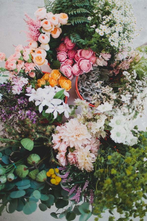 230 best images about || FLORAL FRENZY || on Pinterest | Floral ...
