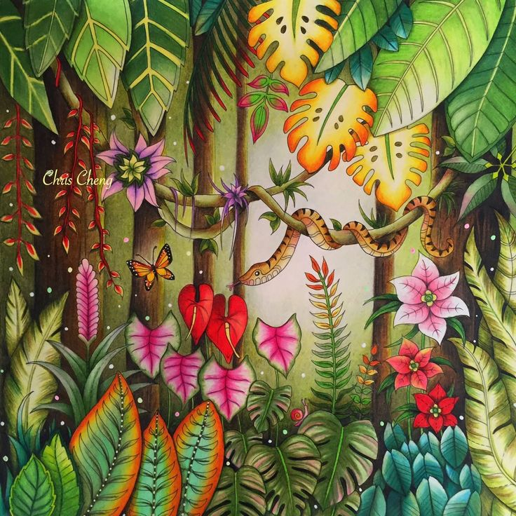 Magical Jungle (colored by Chris Cheng who offers video tutorials online);  Johanna Basford is the artist.