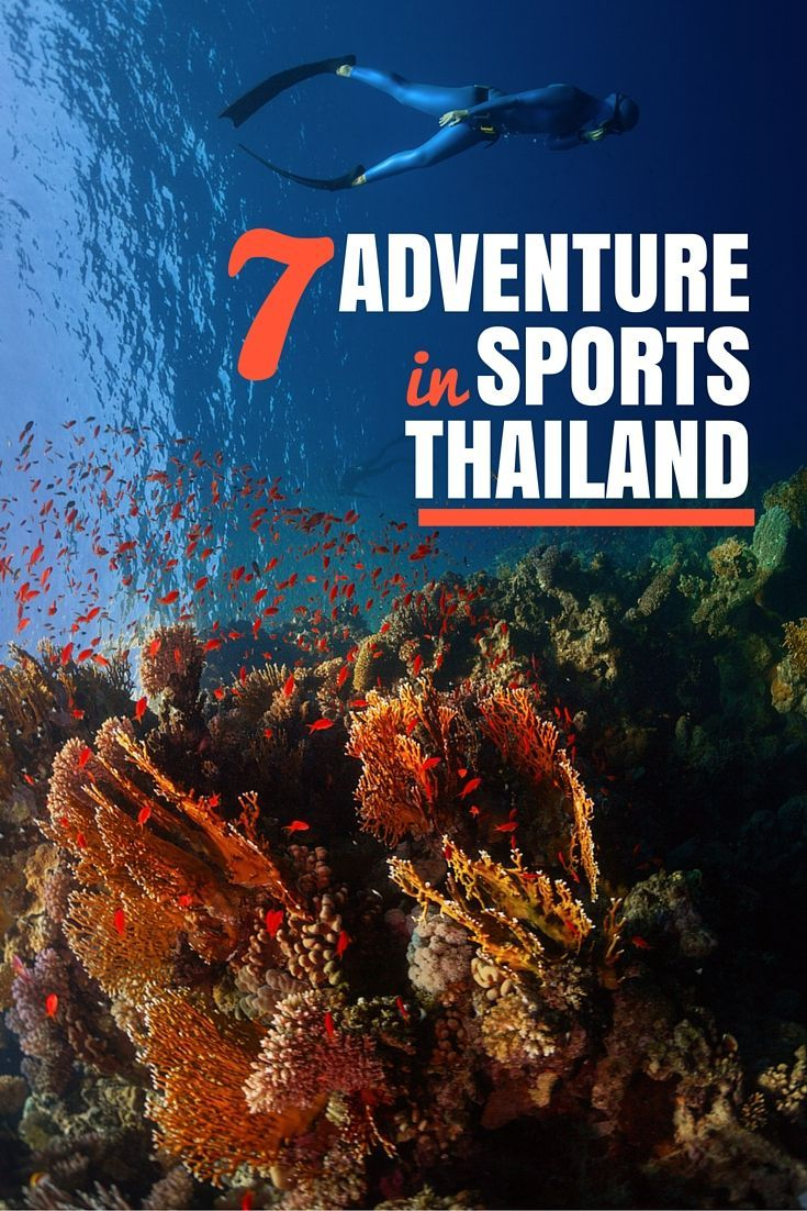 Thailand has adventurous things to do at every bend. From rock climbing without ropes to scuba diving without a tank, there is no shortage of adventurous things to do in Thailand that will push you to your very limits. Check out these adventure sports.