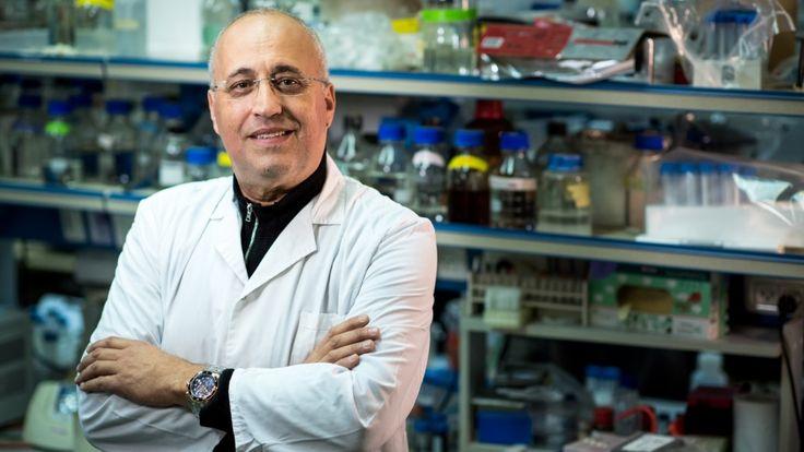 Nanotecnología para tratar el cáncer de estómago Estudio desarrolla procedimiento innovador por vía oral para hacer frente a tumores gástricos. DICIEMBRE 15, 2016, 09:43El Instituto Technion-Israe…
