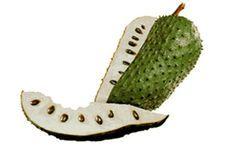Graviola, o Guanábana,Soursop en inglés. La Guanábana o la fruta del árbol de Graviola es un producto milagroso para matar las células cancerosas. Es 10,000 veces más potente que la quimioterapia....