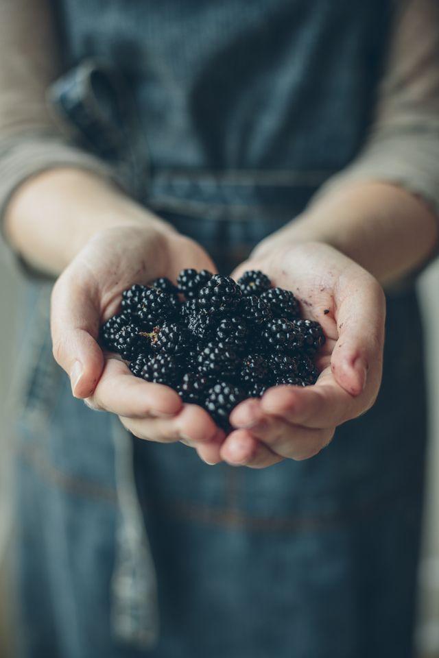 Foraged Irish Blackberries... | DonalSkehan.com