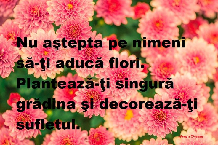 #flori
