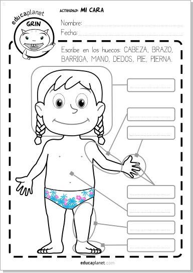 La ficha de partes del cuerpo es un actividad GRATIS #o 7 años en español y en inglés. Descarga e imprime.