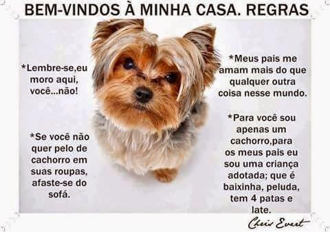 """""""O GRITO DO BICHO"""": Cachorrinho recebe visitas - Regras #ogritodobicho#falabicho"""
