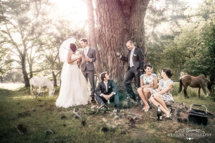 A bridal party relax under a tree with horses in the background.  Love the fairytale feel of this. More wedding photography by Anthony Turnham at www.snapweddingphotography.co.nz