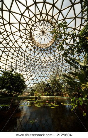 Glass house in botanical garden, Brisbane, Australia