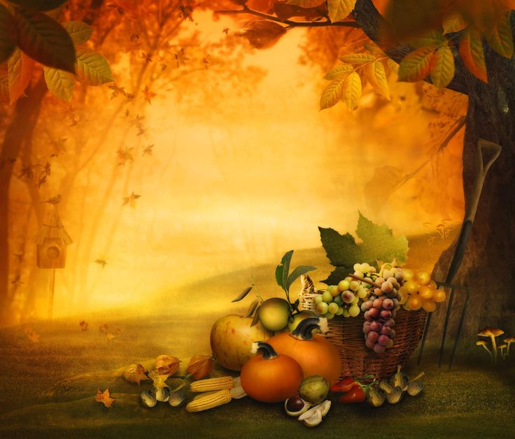 Thanksgiving Backgrounds Thanksgiving Background Images