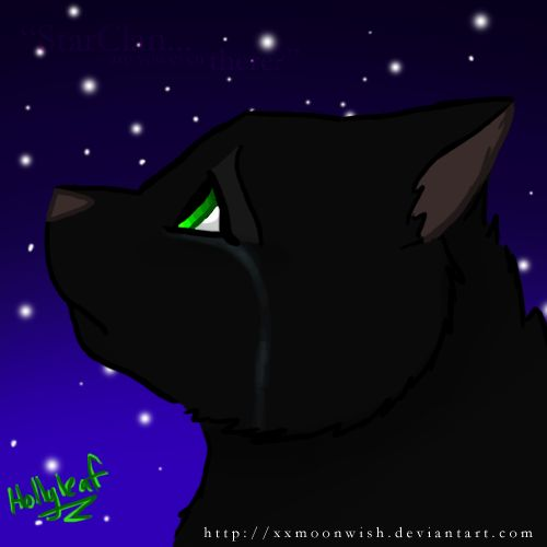 Warriors Erin Hunter Lost Stars: 14 Best Images About For Hollyleaf, Warrior Cats On