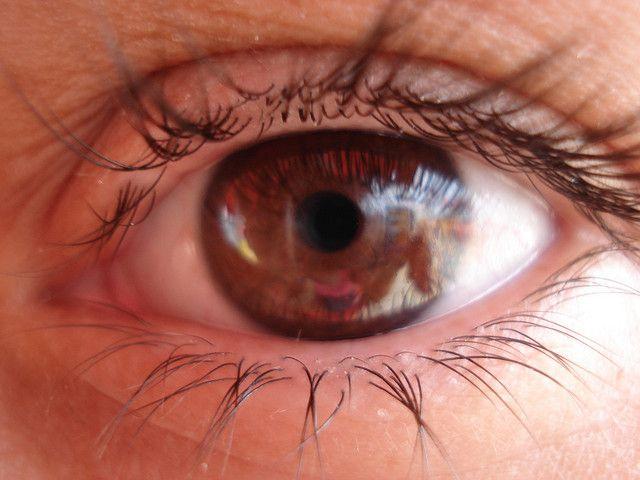Foram feitas algumas pesquisas sobre as as pessoas que tem olhos castanhos, e chegaram à conclusão que tem algo especial em relação as outras.