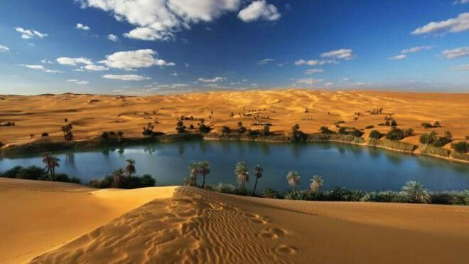 Oasis in the Sahara