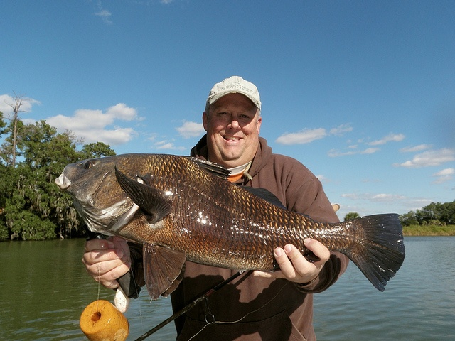 17 best images about black drum on pinterest editor the for Davidson river fly fishing