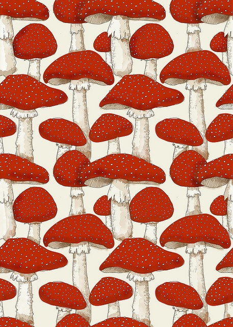 red & white mushrooms