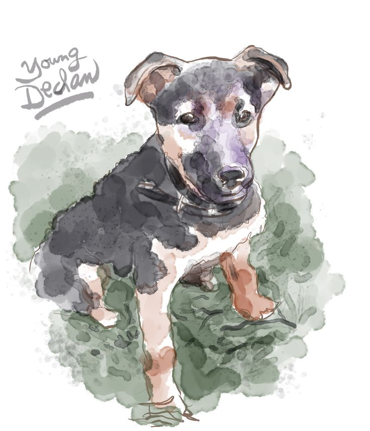 """""""I recall the eight-week-old that cried and yelped beside the freeway fence. Abandoned."""" - from """"Hounds Of Wonder: A Life In Rescue Dogs"""" by B.D. Love.  Illustration by Walt Taylor."""
