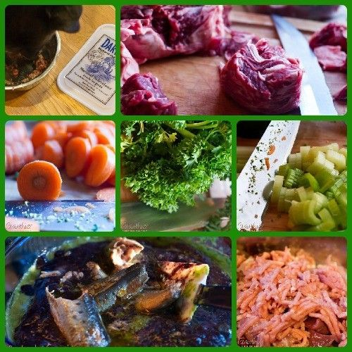 Raw Dog Food, Raw Food Diet for Dogs
