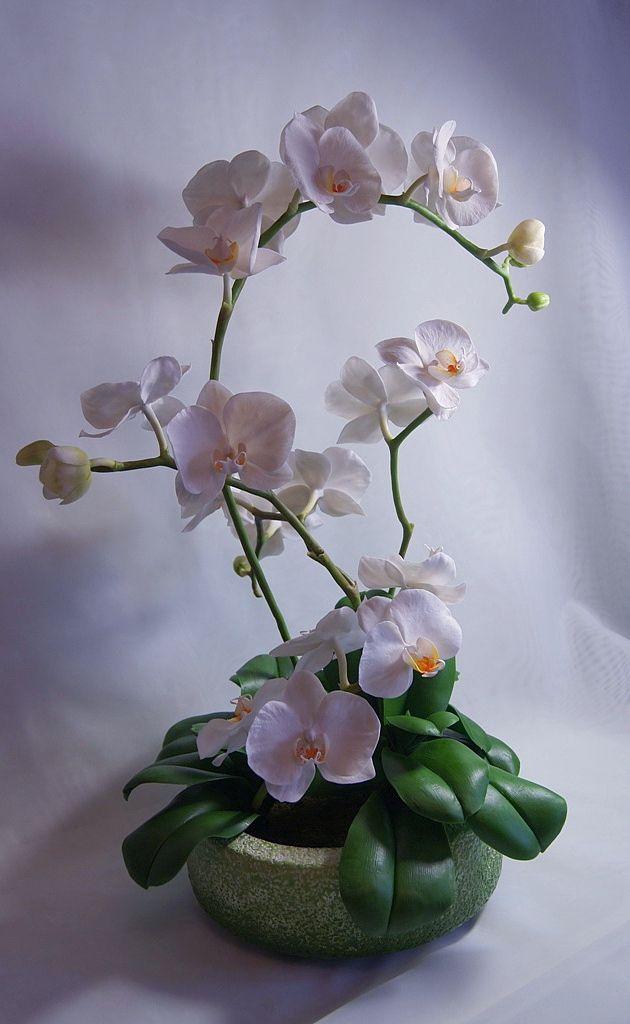 Белая орхидея из флористической полимерной глины. Интерьерная композиция. #фаленопсис #орхмдеи #декордлядома #цветыизглины #холодный фарфор #polymerclay #handmade