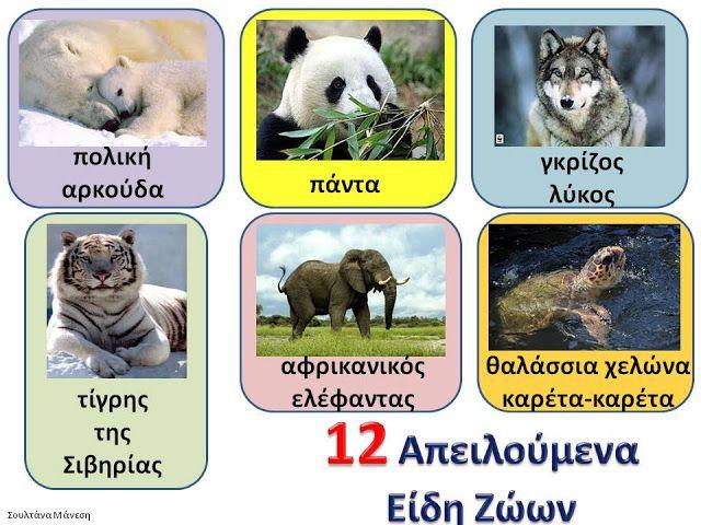 Δραστηριότητες, παιδαγωγικό και εποπτικό υλικό για το Νηπιαγωγείο: 4 Οκτωβρίου: Ημέρα των Ζώων - Πίνακας Αναφοράς για τα Απειλούμενα Είδη τω...