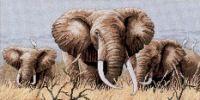 Gallery.ru / Фото #2 - Power of Serengeti - loryah