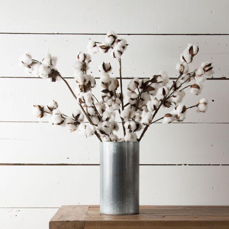 Cotton Stem - Magnolia | Chip & Joanna Gaines