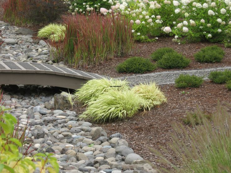 Dry riverbed and ornamental grasses garden grasses for Landscape design using ornamental grasses