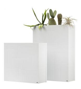 Pflanzkübel aus weißem Metall mit Kakteen bepflanzt - super zum strukturieren von Räumen und als Raumteiler