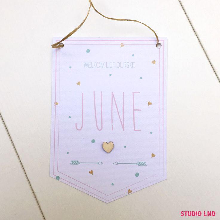 Geboortekaartje June 18/08/2016